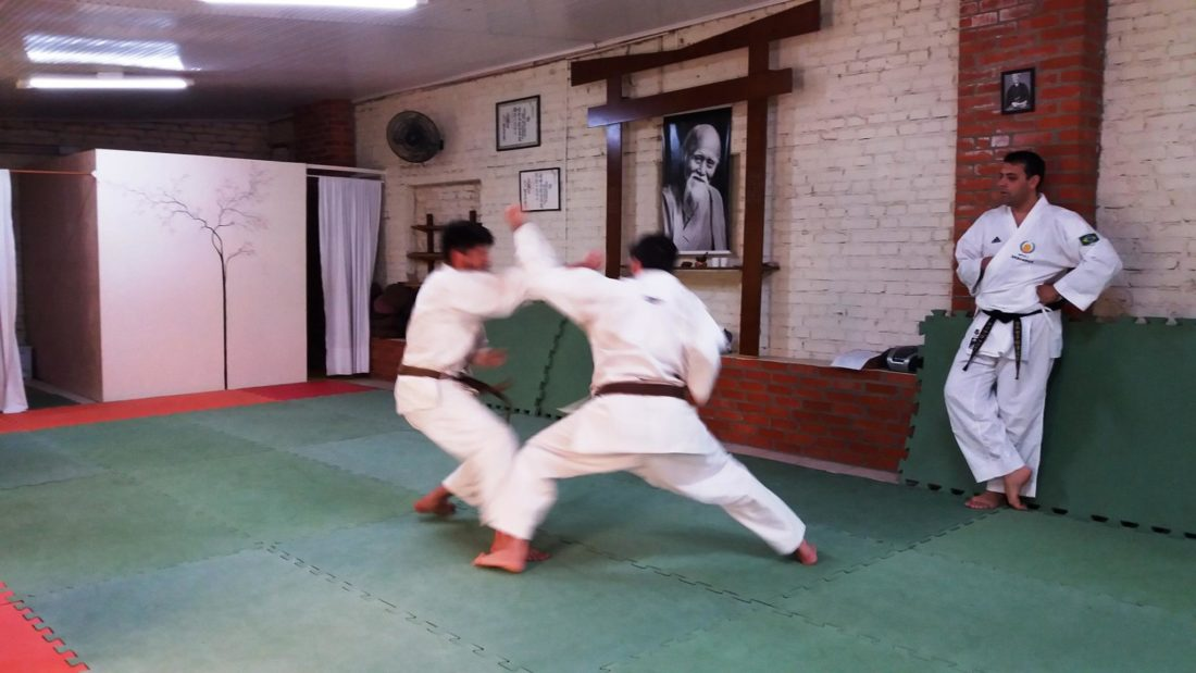 curso_instrutor_karate_01-1100x619