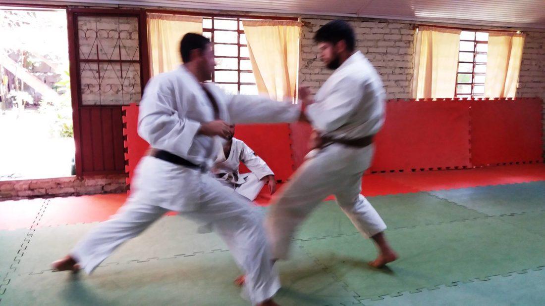 curso_instrutor_karate_04-1100x619