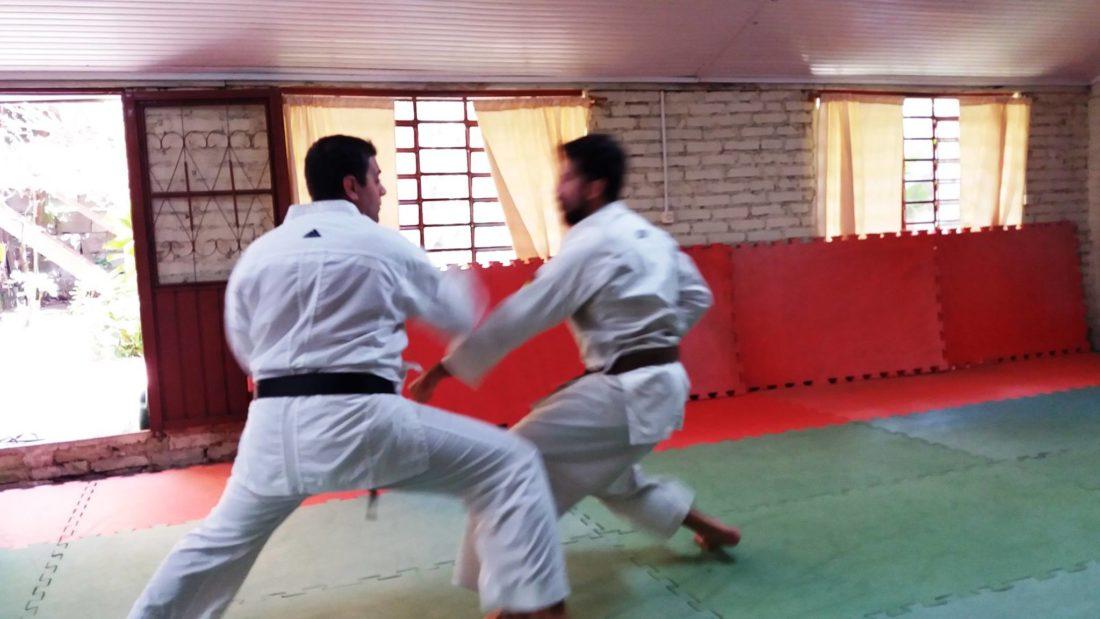curso_instrutor_karate_05-1100x619