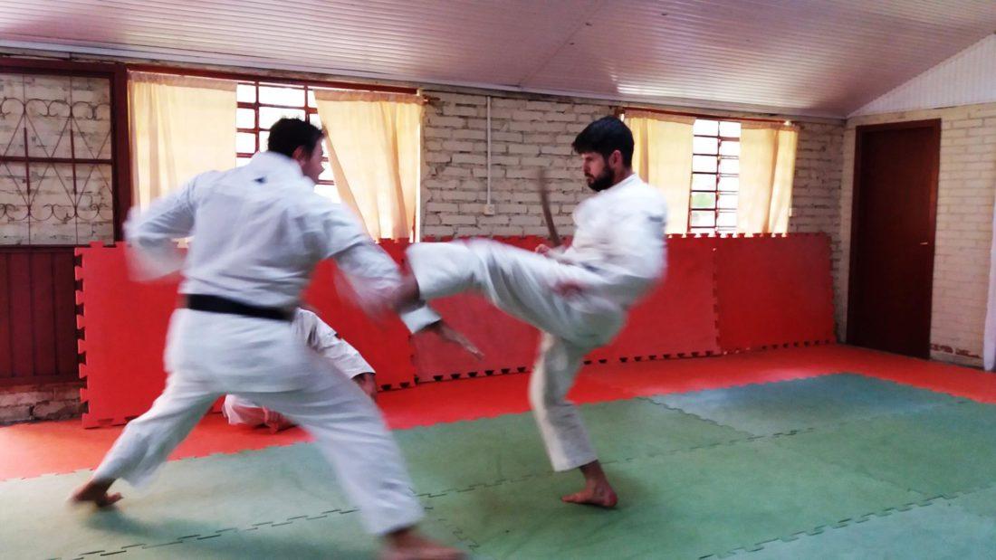 curso_instrutor_karate_06-1100x619