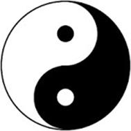 dualismo yin yang Shinjigenkan Brasil