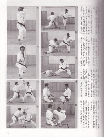 asai16 Shinjigenkan Brasil